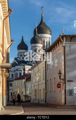 Evening sunlight on the domes of St Alexander Nevsky Cathedral, Tallinn, Estonia - Stock Image