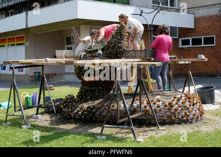 female workers plant flower bulbs in large cat shaped public display lenti zala county hungary - Stock Image