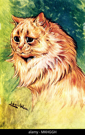Profile of Fluffy Cinnamon Cat - Stock Image