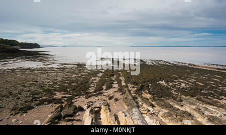 The beach at Clevedon, Somerset, England with sedimentary rock outcrops exposed at low tide. - Stock Image