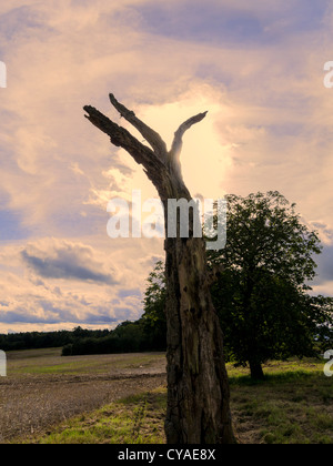 countryside with clouds - Stock Image