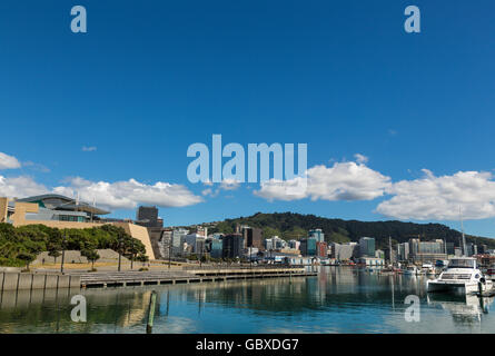 Wellington skyline and Te Papa Museum, New Zealand - Stock Image