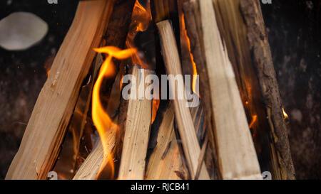 Kanada, Alberta, Kanadische Rocky Mountains, Jasper National Park, Wilcox Creek Campground, Feuerstelle, brennende Holzscheite - Stock Image