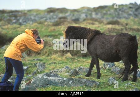 Photographer and pony England - Stock Image