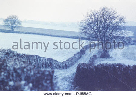 Winter snowy landscape in the Hampshire Downs near Well, Hampshire, England, UK, showing a rural track in grainy desaturated colour – 1976 - Stock Image
