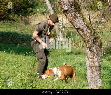 A hunter with 'Posavac' Hound, a Scenthound From The Sava Valley in Croatia - Stock Image