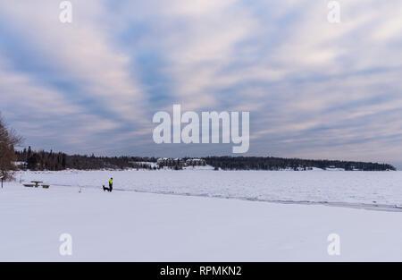 A man walking his dog along the shore of icy Lake Superior. Two Harbors, Minnesota, USA. - Stock Image