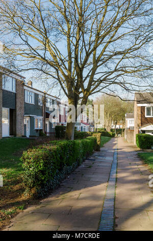 Mid-Century Modern 1960s Housing at Pin Green, Stevenage New Town, with trees and gardens. - Stock Image