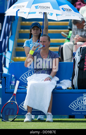 Petra Kvitova takes a break between games on a blue players bench at the Aegon International tennis tournament in - Stock Image