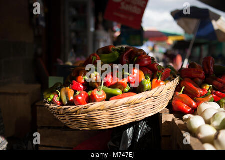 A basket piled with red and green peppers for sale at an outdoor Mayan farmer's market in San Cristobal Verapaz, - Stock Image