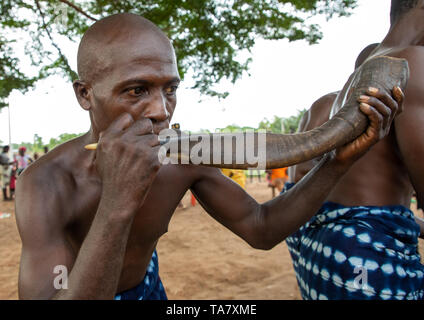 Musician blowing in a horn during a Goli mask dance in Baule tribe, Région des Lacs, Bomizanbo, Ivory Coast - Stock Image