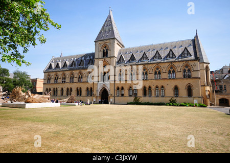 Oxford University Museum of Natural History, Parks Road, Oxford, Oxfordshire - Stock Image