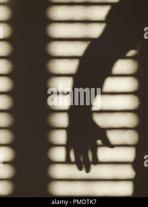 shadow of a man's arm and blinds - Stock Image