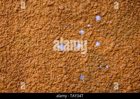 Orange coloured wall with sprinkled and shelled - Stock Image