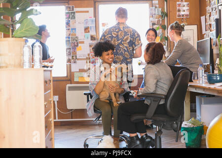 Creative business people with dog in office - Stock Image