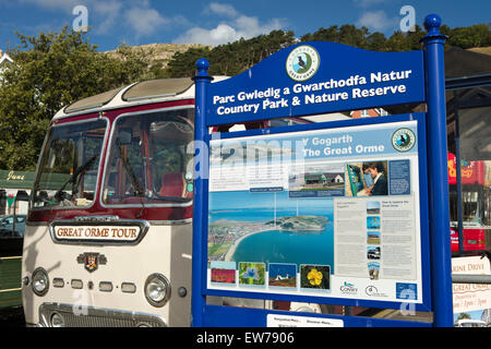 UK, Wales, Conwy, Llandudno,, Great Orme Country Park board and 1958 Leyland Tiger Cub Coach tour bus - Stock Image