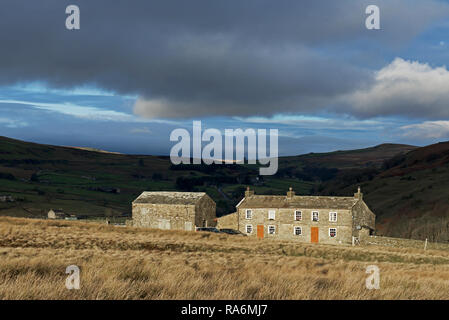 Farm - Yellow Houses - in Arkengarthdale, Yorkshire Dales National Park, North Yorkshire, England UK - Stock Image