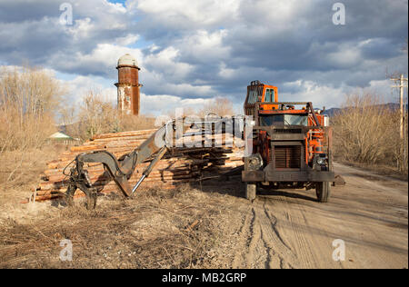 A Prentice knuckleboom loader, mounted on an orange, heavy duty Kenworth diesel powered truck, on the yard, at Fodge Pulp Products, in Bonners Ferry,  - Stock Image