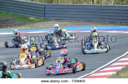 Larkhall, UK. 21st April, 2019. Action from a busy Honda Cadet class Heat  during Round 2 of the 2019 WSKC Club Championship at Summerlee Raceway. Credit: Roger Gaisford/Alamy Live News - Stock Image