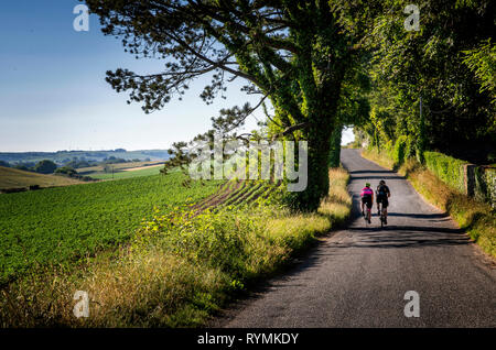 Cyclists on a country road near Scrabo in County Down - Stock Image