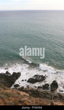 Sea lions on rocky beach Point Dume state park California - Stock Image