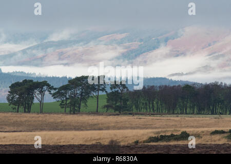 Loch Lomand and the Trossachs National Park, Scotland, UK. 4th Dec, 2018. UK weather - the sun shines through a break in the clouds over the Trossachs highlighting low lying mist Credit: Kay Roxby/Alamy Live News - Stock Image