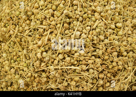 Produce for sale at market, Shiraz, Iran - Stock Image