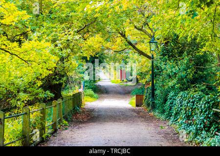 Walking trail in Hampstead Heath of London - Stock Image
