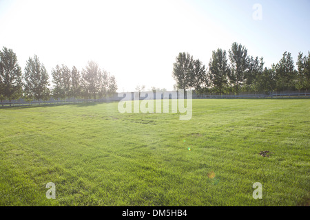lawn in Chinese village - Stock Image