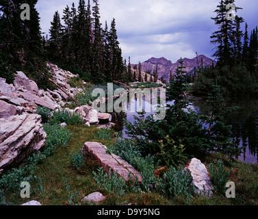 South Maybird Lake with Twin Peaks beyond Maybird Gulch Lone Peak Wilderness Little Cottonwood Canyon Tributary - Stock Image
