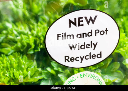 Recycling instructions on pot of Curly Leafed Parsley. - Stock Image