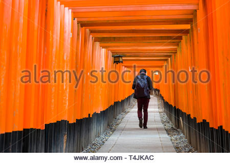 Man walking beneath the Senbon Torii painted with a vermilion red-orange color that is associated with the soul of Inari Okami and blessings for life, - Stock Image