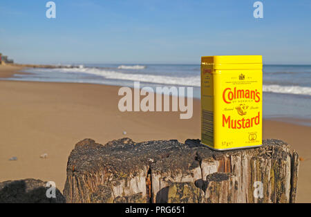A tin of Colman's Mustard on a wooden post outdoors on a North Norfolk beach. - Stock Image