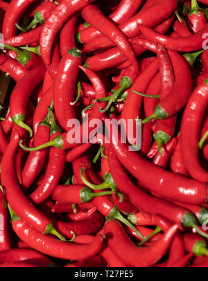 Newcastle-upon-Tyne, NE England city. Red hot chillies offered by a street market vendor, Eldon Square. - Stock Image