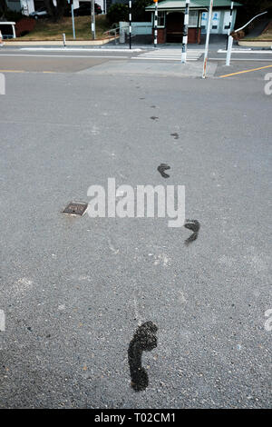 Wet footprints leading away from beach across pavement. Oriental Parade, Wellington, New Zealand - Stock Image