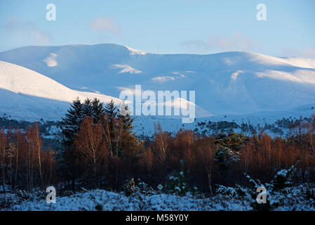 The Cairngorm mountains in mid Winter from Rothiemurchus Estate near Aviemore. - Stock Image