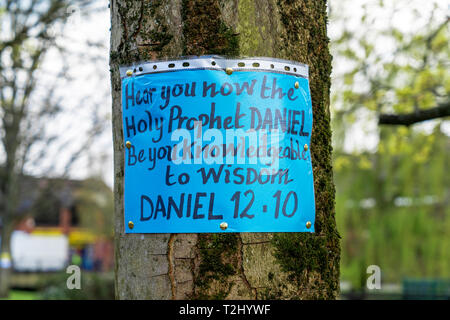 Blue flyer pinned to a tree drawing attention to the words of the Prophet Daniel in Daniel 12.10 - Stock Image