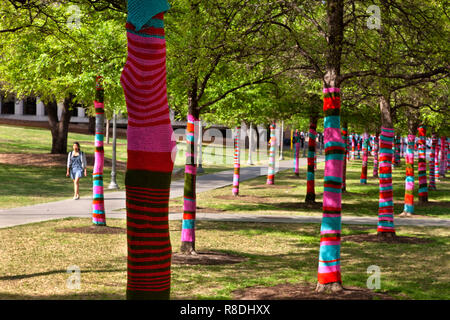 Knit bombed trees, Larry & Mary Ann Faulkner Plaza, Blanton Museum Of Art, University Of Texas Campus, - Stock Image