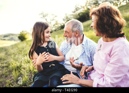 Senior couple with granddaughter outside in spring nature, relaxing on the grass and having fun. - Stock Image