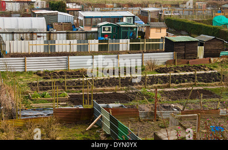 Gardeners allotment plots ready for cultivation of gardners homegrown vegetables and flowers - Stock Image