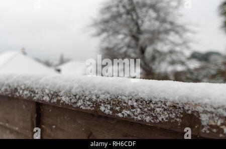 Poole, UK. 1st February 2019. There's snow even in Poole in Dorset, on the south coast of England. Snow on a fence and on trees. Credit: Thomas Faull/Alamy Live News - Stock Image