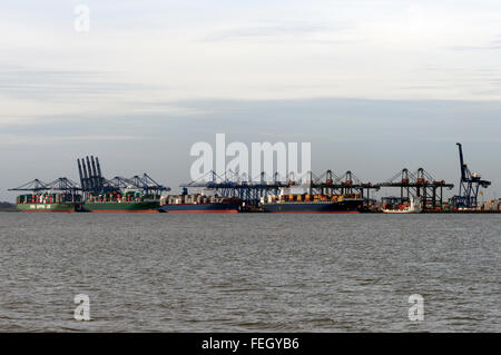 Trinity Quay Port of Felixstowe Suffolk UK - Stock Image