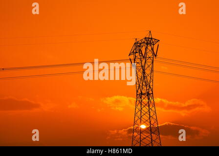 isolated high voltage pylon on orange sky - Stock Image