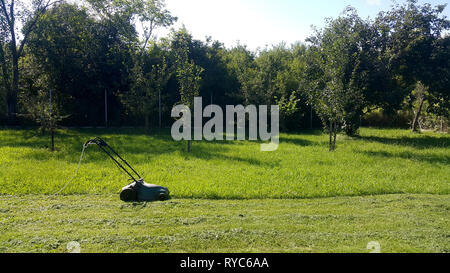 Cutting a green spring grass with a small electric lawn mower. - Stock Image