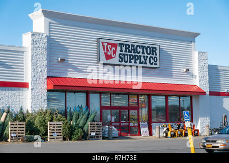 A Tractor Supply Co store in Gloversville, NY USA with Christmas trees and merchandise on display on the sidewalk. - Stock Image