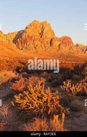 Red Rock Canyon in Nevada just outside Las Vegas. - Stock Image