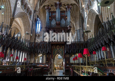 The Quire in Exeter cathedral, Devon. - Stock Image
