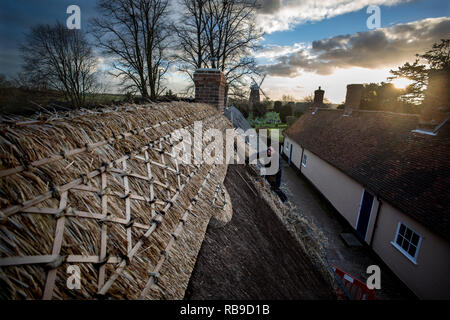 Thaxted, Essex, England, UK. 8th Jan, 2019. Thatching the Ancient Almeshouses in Thaxted north west Essex. Martin Potter from Sible Heddingham a 5th generation thatcher is seen replacing the Long Straw Thatched ridge on the roof of the Almeshouse known as the Chantry built in the 17th century. Martin Potter is using a mixture of long straw from Yorkshire and Essex to complete the job which is expected to take a month to finish. John Webbs windmill can be seen in the background. Credit: BRIAN HARRIS/Alamy Live News - Stock Image