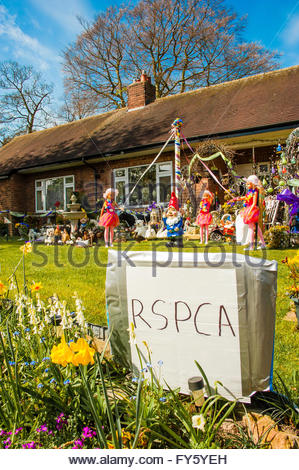 Sandbach, Cheshire UK. 22nd April 2016 Sunshine in Cheshire, a Warm and sunny day as one householder sets a garden - Stock Image