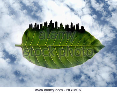 City skyline on the edge of green leaf - Stock Image